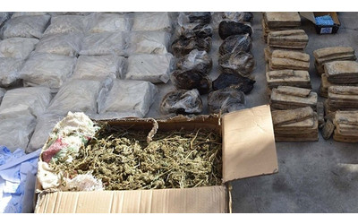 Over 2.5 tons of drugs seized in Tajikistan in 3 months