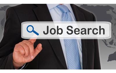 Uzbekistan launches national portal for job seekers