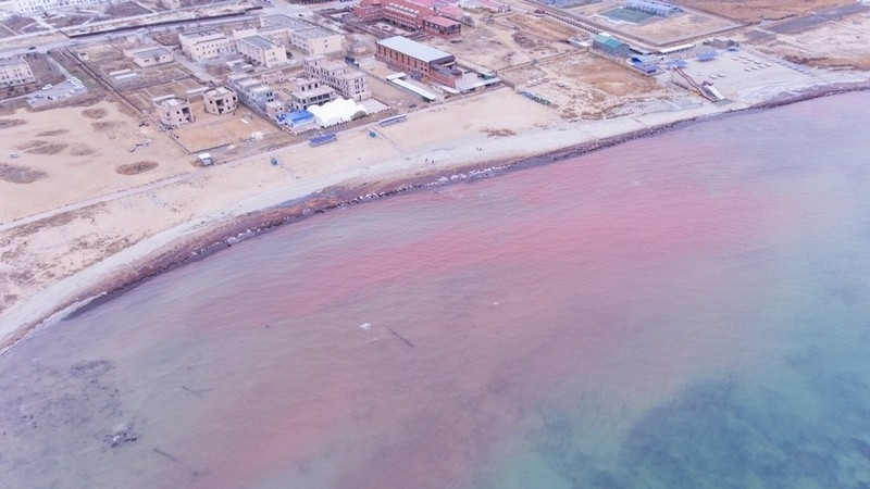 Image result for caspian sea red
