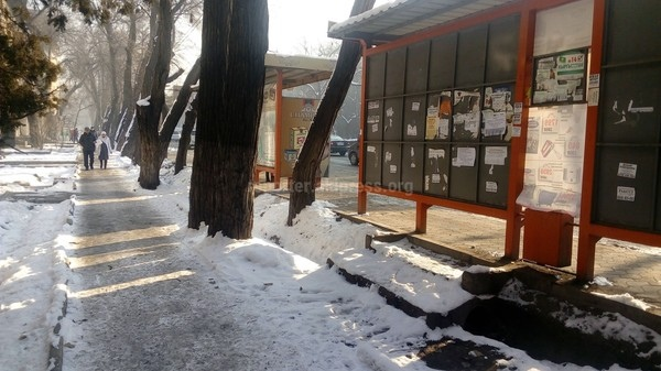 181 more bus-stops to open in Bishkek - AKIpress News Agency